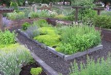 Garten und so