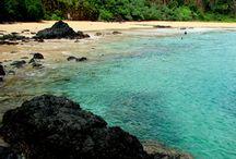 Paraísos / Lugares para se visitar, paraísos naturais