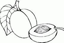 Ovoce / omalovánky