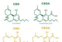 Estruturas químicas