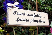 Fairy Garden / by Such Nice Things
