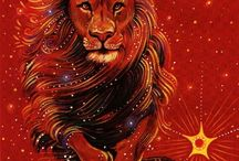 compleanno leone