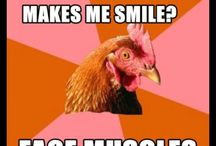Anti-chicken jokes