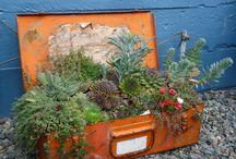 Gardening/garden gifts / by Heather Hotta