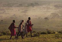 Kenia / Ontdek Kenia! Hoewel Kenia een populair safariland is, weet Talisman plekjes te vinden die voor andere reizigers verborgen blijven. Wij selecteerden alleen de beste en meest exclusieve lodges op fantastische locaties, waar u kunt genieten van puur safari!