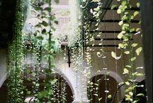 Indoor nature