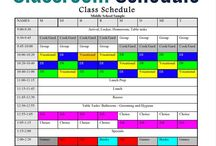 Sped Scheduling and Management