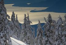 Skiing / Skiing