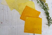 Colors of Pachamama / natural dyeing