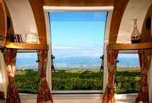 A Room with a View / What's the best view you have seen through your Bailey window?
