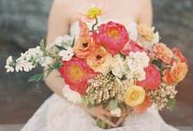 Weddings - Bright & Cheery / by Jen Huang