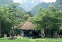 Tam coc garden resort / tam coc garden resort