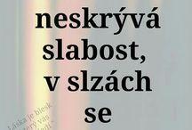 citaty sk :)