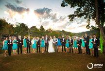 Vestidos de madrinhas de casamento / Uma coleção com vestidos de madrinhas de casamento!