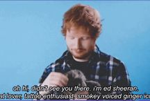TEddy Sheeran