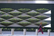 Green Wall - Paredes Verdes