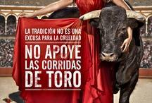 STOP CORRIDAS DE TOROS .. Stop cruelty to animals /  Stop bullfight. Stop cruelty to animals