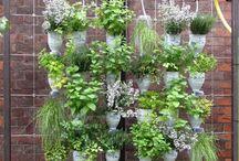 verticaal tuinieren met potten