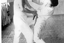 Training, Martial Arts & MMA