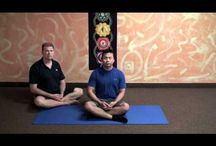 Yoga Teacher Training Videos / Watch lectures and demonstrations for Yoga instructors.