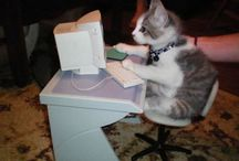Animal Humor / Humorous animals in funny situations / by Internet Marketing Business Hub
