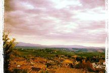 View from the Consorzio Denominazione San Gimignano