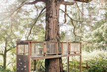 Treehouse designs