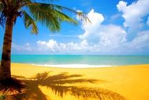 Tropical Beach Inspiration