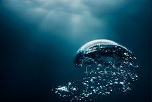 archivio saloni nautici amer / foto e ricordi dei saloni nautici in giro per il mondo