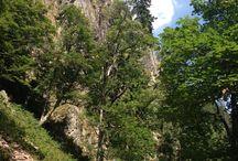 Vosges & Fermes-Auberges