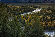 Wyoming / by Cheryl Jasso