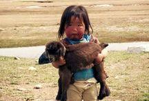 bimba e alpaca