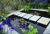 Ponds and water features