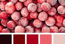Tonos Rojizos / El rojo activa y da energía. Contrasta muy bien con el marrón oscuro. El beige rosado le da un toque más suave y armonioso a esta paleta ardiente. #beige rosado #bermejo, #burdeos, #burdeos y #rojo, #colorsangría, combinación de tonos contrastantes, #coral, #marrónoscuro, #rojocoral, #rojointenso, #rojovino, #tonoscálidos, #tonosrojos #picoftheday #trends #trend #colorcouncil