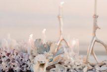 Beach Wedding / Strandbröllop