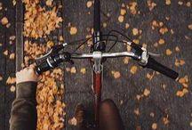 autumn motiv