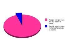 Fun & facts