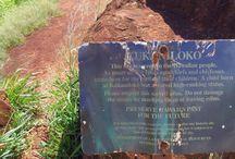 Kukaniloko Birthing Stones / クカニロコ・バース・ストーンは、ハワイ王族にとって、とても神聖な場所とされています。 現在は一般の方も立ち寄ることができますが、敬意を持って訪ねたい場所です。