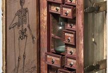 Curiosities / Cabinet of curiosities and Naturalia