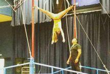~Cirque~