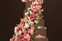 Cake & Candy