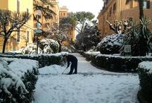 Roma e basta