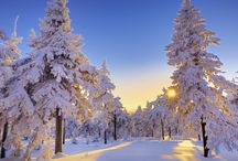Milka's Winter Party / Winter wonder Milka-land