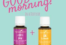 YL LIFESTYLE! / by Erika @ Healthy Living with Oils
