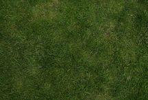 textuur gras