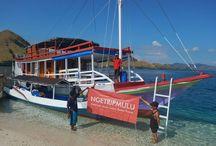 Sailing Komodo
