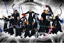 Kingdom Hearts Organisation XIII
