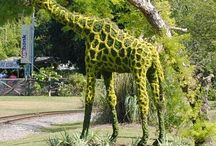 Topiary and garden sculptures