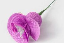 virágok papir
