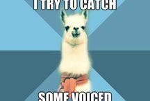 speech funnies